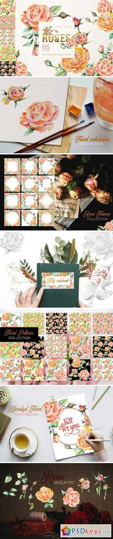 Stylish rose Watercolor png 3316154