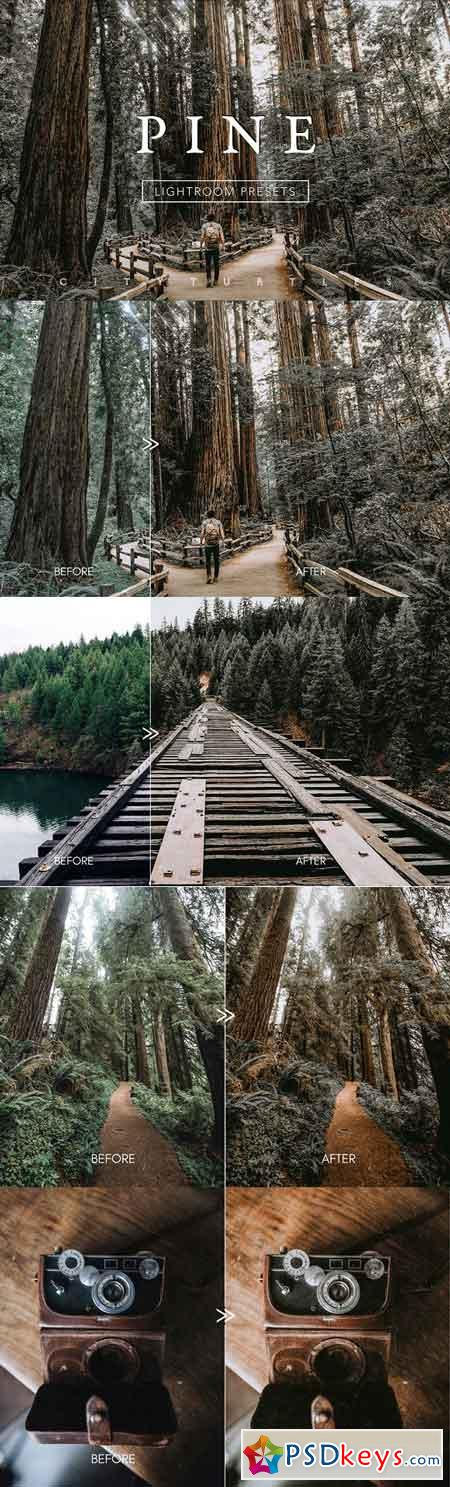PINE Warm Moody Lightroom Presets 3335215