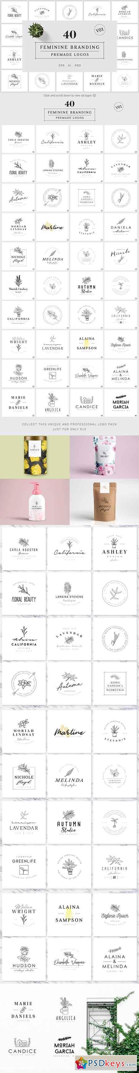 Feminine Branding Premade Logos V01 3332043