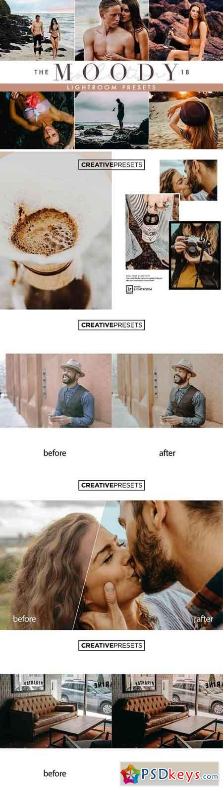 Moody Lightroom Presets 2672105