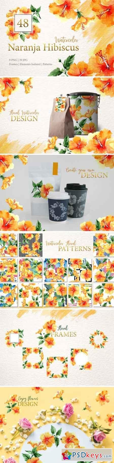 Naranja Hibiscus Watercolor png 3360626