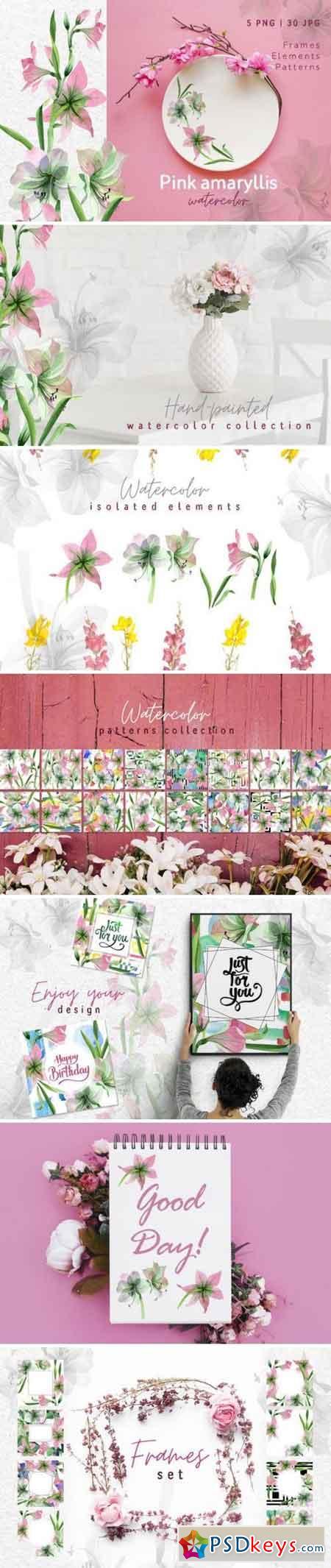 Pink amaryllis Watercolor png 3360682