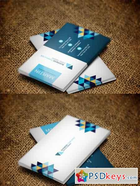 Simple Professional Business Card 3523272