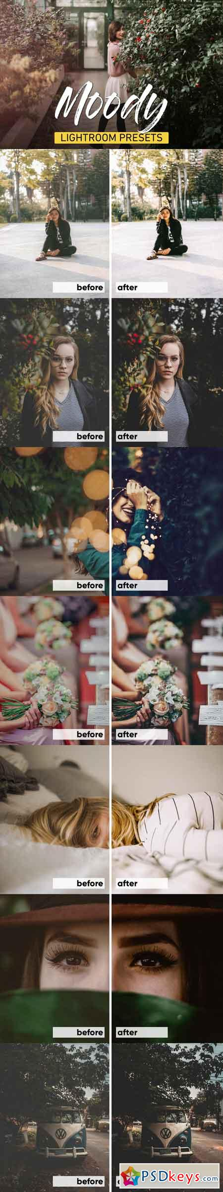 Moody Lightroom Presets Bundle 3320760