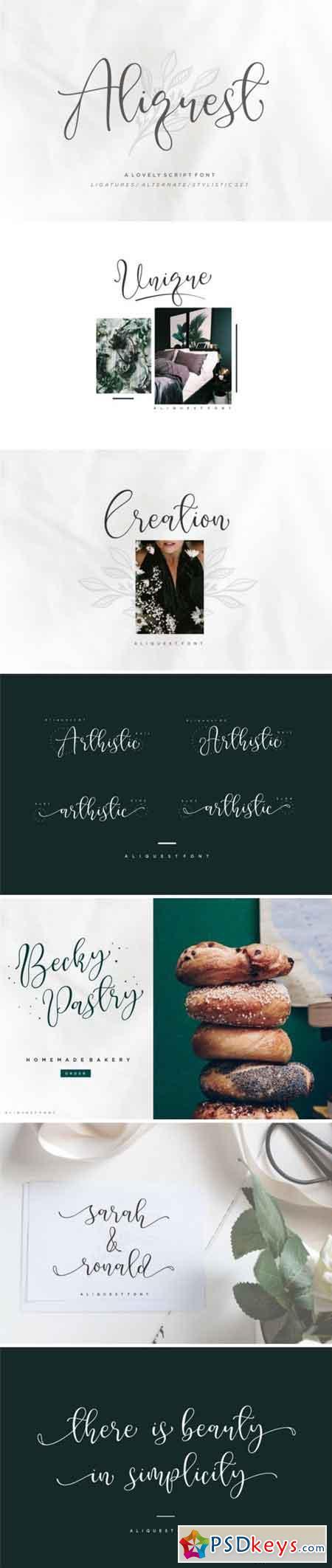 Aliquest Script Font 3373139