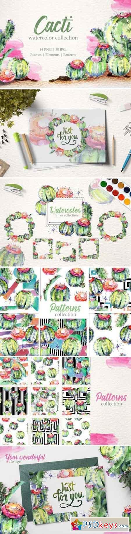 Cacti Watercolor png 3371512