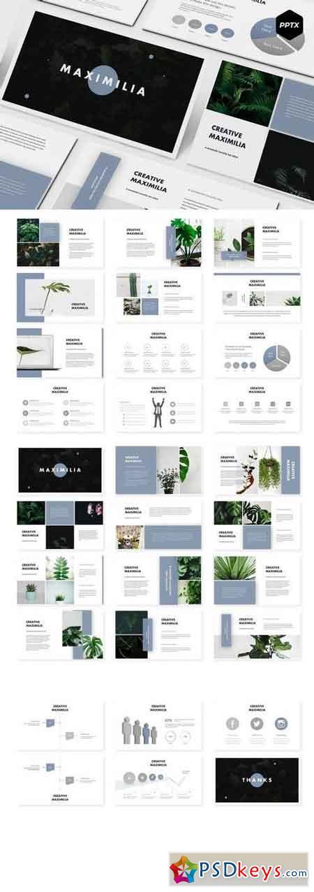 Maximilia - Powerpoint, Keynote, Google Sliders Templates