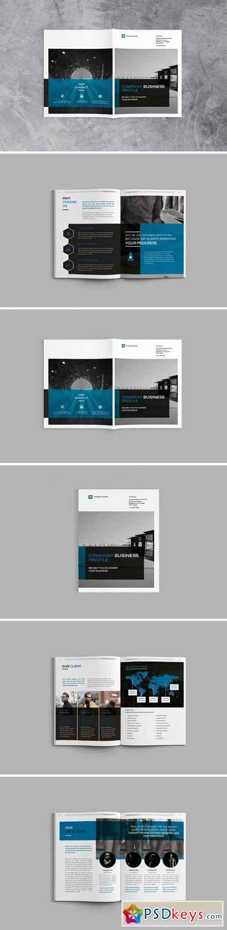 Company bisnisse Profile