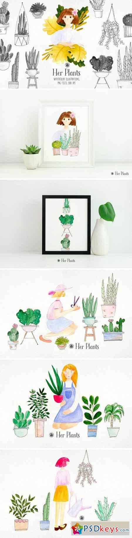 Her Plants 3332505