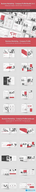 Business Marketing – Company Profile Bundle 3 in 1 23198540