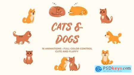 Cats And Dogs Hand Drawn Pack 169854 After Effects Projects
