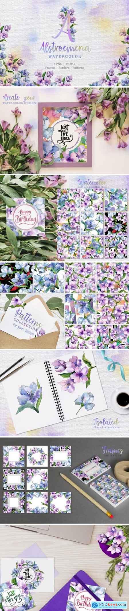 Creativemarket Alstroemeria Violet Watercolor png