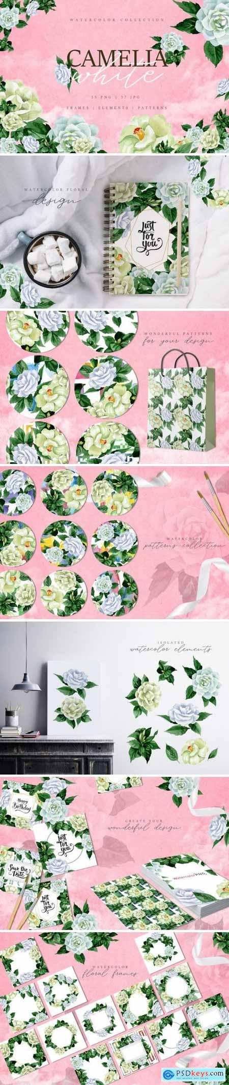 Camelia white Watercolor png