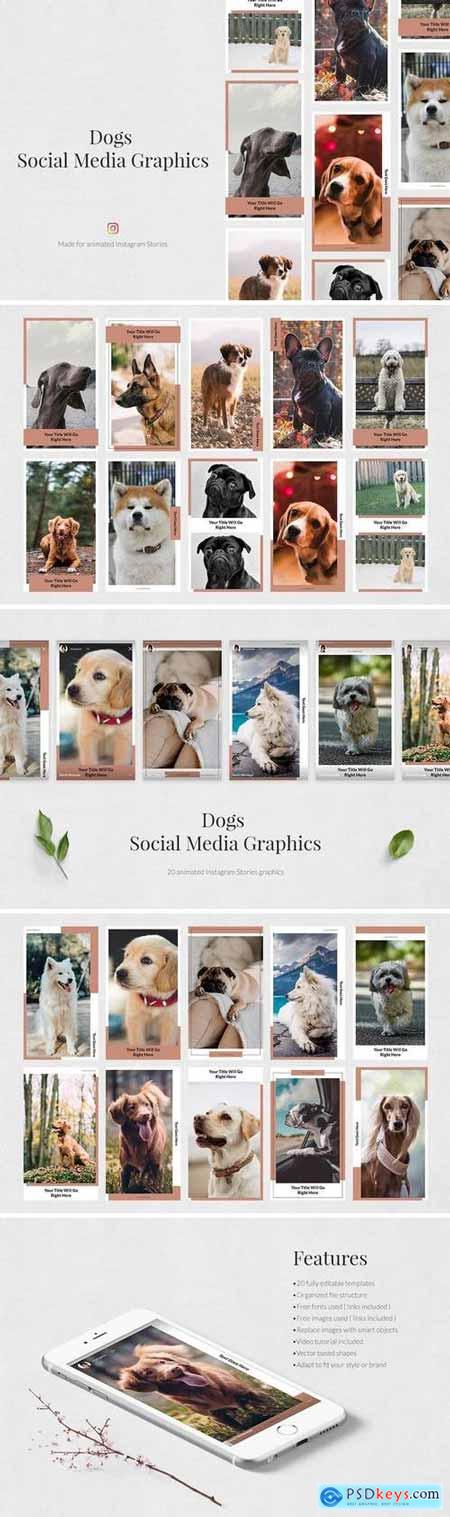 Creativemarket Dogs Animated Instagram Stories
