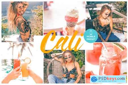Creativemarket CALI - Mobile Lightroom Preset