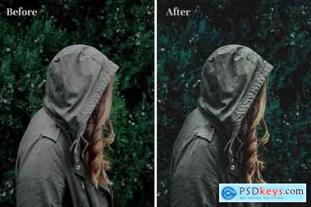 Creativemarket Forest Green - Lightroom Presets