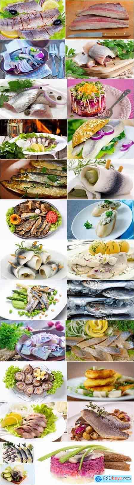 Seafood fish herring dish 25 HQ Jpeg