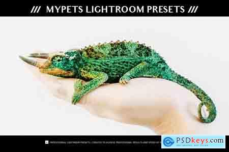 Creativemarket myPETs Lightroom Presets