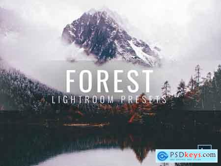 Creativemarket Lightroom Presets Moody Forest