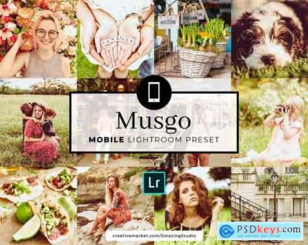 Creativemarket Mobile Lightroom Preset Musgo