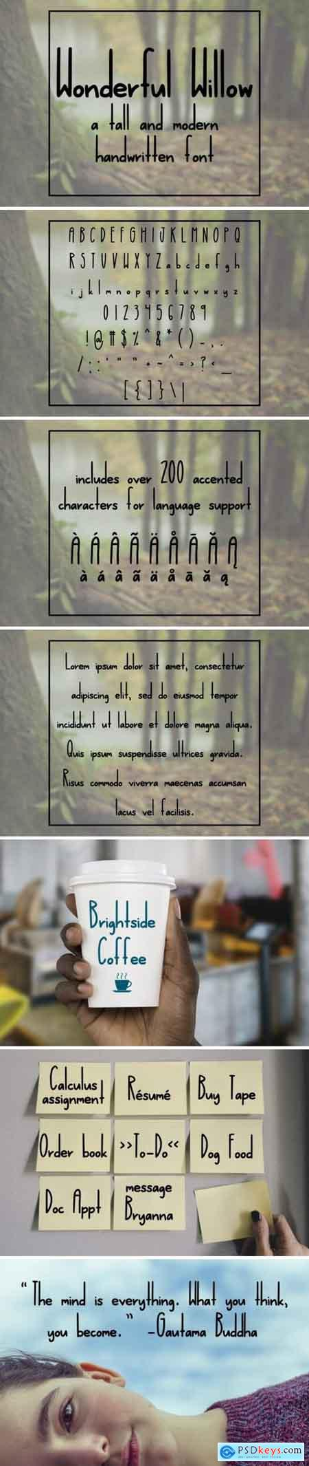 Wonderful Willow Font
