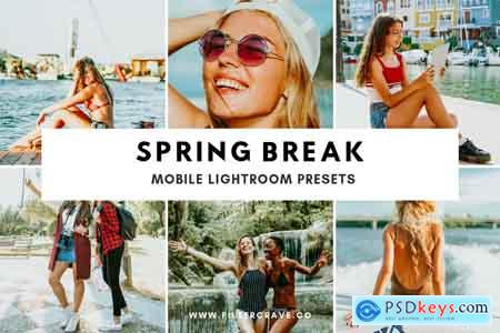 Creativemarket Spring Break Mobile Lightroom Preset