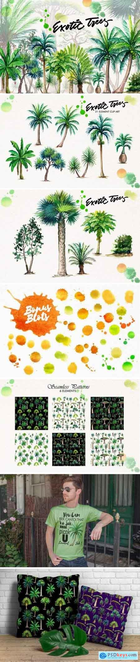 Creativemarket Watercolor Exotic Trees