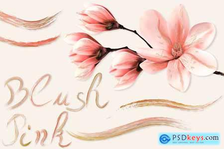 Creativemarket Blush Pink Brushes for Illustrator