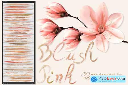 Creativemarket Blush Pink Brushes for Illustrator