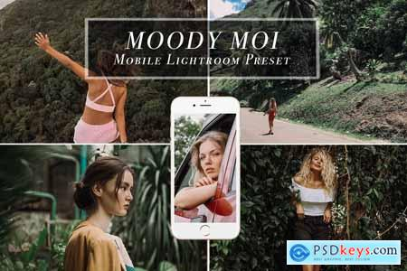 Creativemarket Mobile Lightroom Preset MOODY MOI