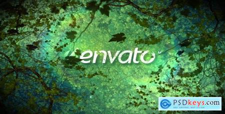 Videohive Grow Plants Free