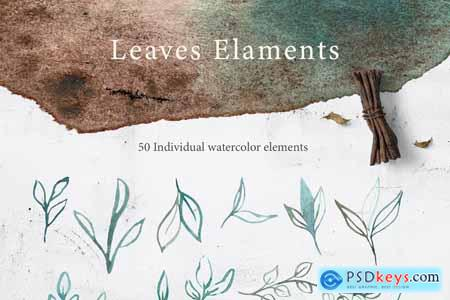 Creativemarket watercolor WOODLAND Collection