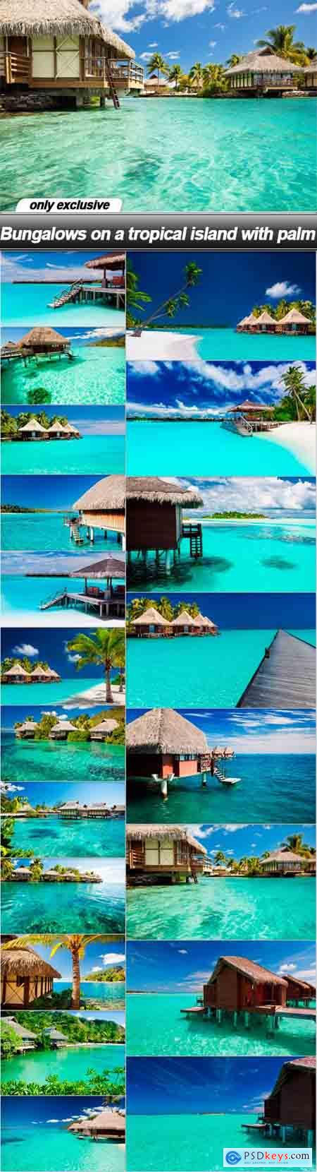 Bungalows on a tropical island with palm - 20 UHQ JPEG