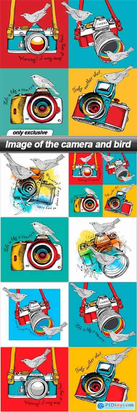 Image of the camera and bird - 8 EPS