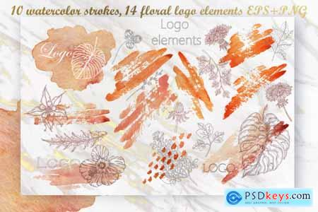 Creativemarket Watercolor Strokes Floral Logo Elements