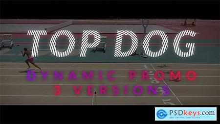 Videohive TOP DOG Dynamic Opener Free