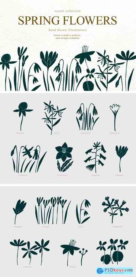 Creativemarket Spring Flowers Vector Collection 3545067