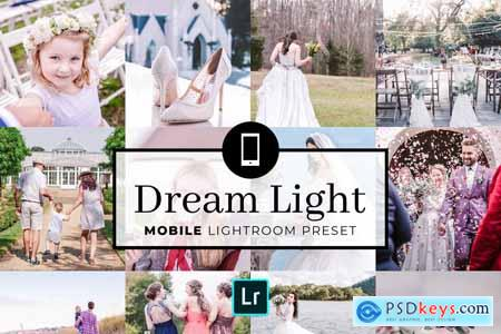 Creativemarket Mobile Lightroom Preset Dream Light