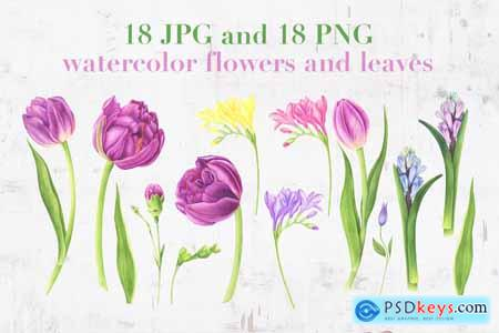 Spring Garden Watercolor Set