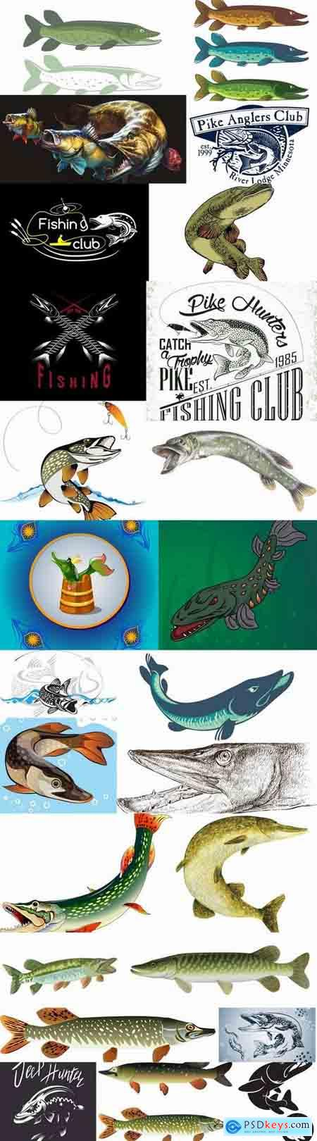 Trophy pike fishing mining vector image 25 EPS