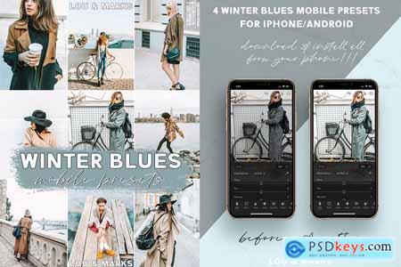 Winter Blues Mobile Presets