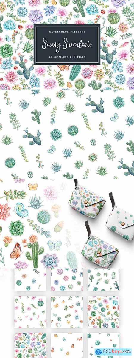 Savory Succulents - Seamless Patterns