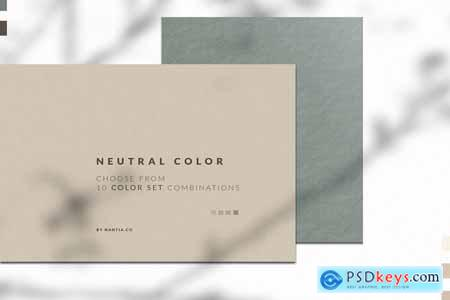 Creativemarket Neutral Color Palette collection