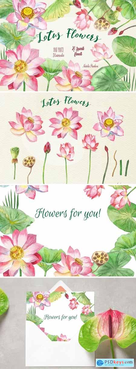 Lotus Flowers Watercolor Clipart