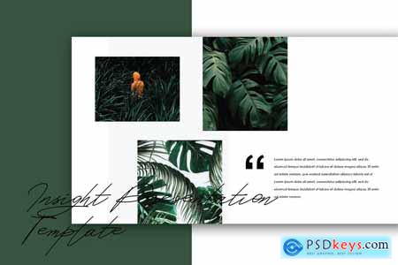 Insight - Powerpoint