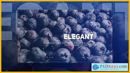 Videohive Elegant Flow Slides Free