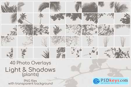 40 Plant Shadows Overlays