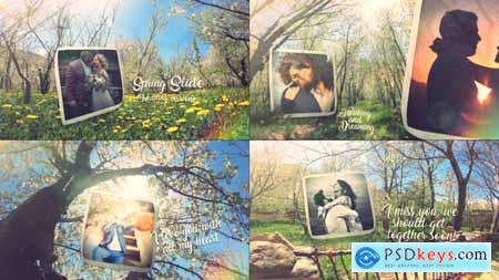 Videohive Spring Wedding Slide Free