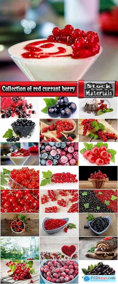 Collection of red currant berry black dessert juice 25 HQ Jpeg