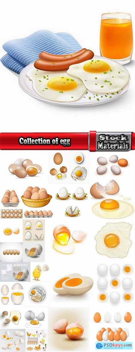 Collection of egg shell eggs breakfast omelette 25 EPS